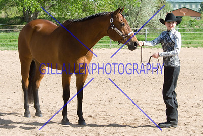 HorseShow-2565-36