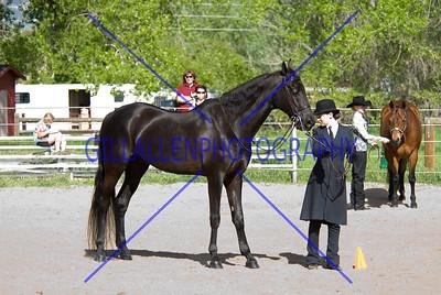 HorseShow-2557-28