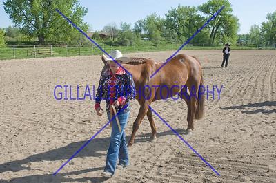 HorseShow-1538-23
