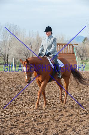 Colorado Pinto Horse Association