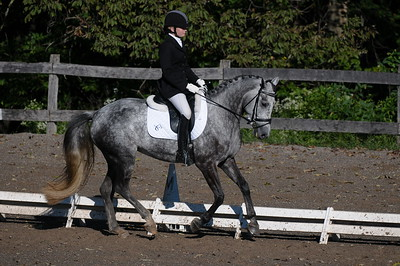 BCHP 9/9/2012 - Dressage Ring 3