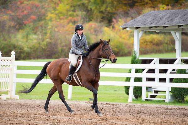End of Hunt Equestrian Center October 2014