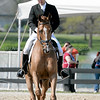 Images of Philip Dutton on Woodburn from the 2008 Rolex Three-Day Event at the Kentucky Horse Park in Lexington Kentucky. From Troutstreaming Outdoor and Sports Media's on location coverage. All content Copyright 2008 J Andrew  Towell Troutstreaming.
