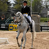 Images of Becky Holder on Courageous Comet from the 2008 Rolex Three-Day Event at the Kentucky Horse Park in Lexington Kentucky. From Troutstreaming Outdoor and Sports Media's on location coverage. All content Copyright 2008 J Andrew  Towell Troutstreaming.