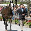 Images of Waylon Roberts on Paleface from the 2008 Rolex Three-Day Event at the Kentucky Horse Park in Lexington Kentucky. From Troutstreaming Outdoor and Sports Media's on location coverage. All content Copyright 2008 J Andrew  Towell Troutstreaming.