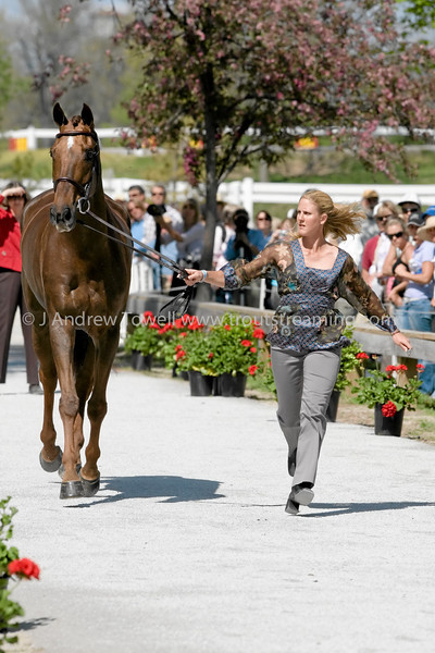 Images of Allison Springer on Arthur from the 2008 Rolex Three-Day Event at the Kentucky Horse Park in Lexington Kentucky. From Troutstreaming Outdoor and Sports Media's on location coverage. All content Copyright 2008 J Andrew  Towell Troutstreaming.