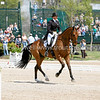 Images from Fridays dressage test at the 2008 Rolex Three-Day Event at the Kentucky Horse Park in Lexington Kentucky. From Troutstreaming Outdoor and Sports Media's on location coverage. All content Copyright 2008 J Andrew  Towell Troutstreaming.