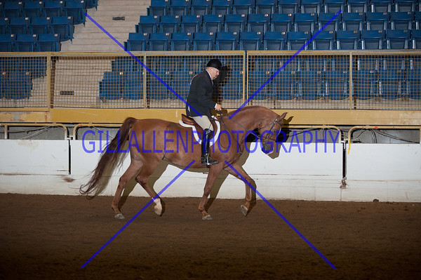 National Western Stock Show