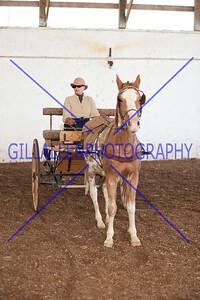 G01_5694