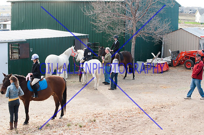 All Equestrian