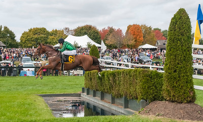 International Gold Cup Races 2015