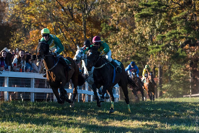 Montpelier Hunt Races 2016