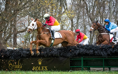 Montpelier  Hunt Races 2014
