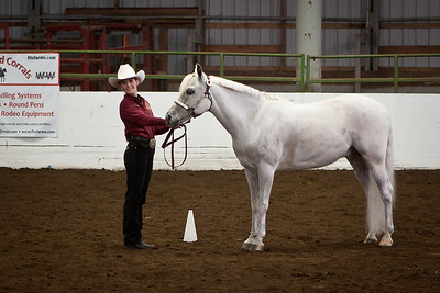 McKenzie and Lucky in showmanship.