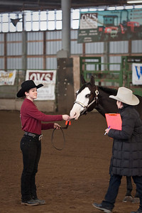 Allison and Roxy in Showmanship.