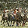 Pacific Northwest Polo TPC Mosaic - Base image from Tacoma Polo Club with 2000 Tiles from Kelley Creek Polo Club and Tacoma Polo Club tournaments.