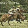 Pacific Northwest Polo KCPC Mosaic - Base image from Kelley Creek Polo Club with 3000 Tiles from Kelley Creek Polo Club and Tacoma Polo Club tournaments.