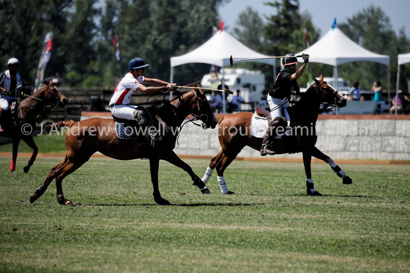 20170708 Seattle Polo Club Pacific Northwest Governors Cup