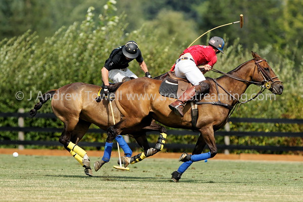 201708012 Seattle Polo Party Snapshots