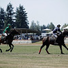2018 USPA Pacific Northwest Circuit Governor's Cup at Seattle Polo and EquestrianClub