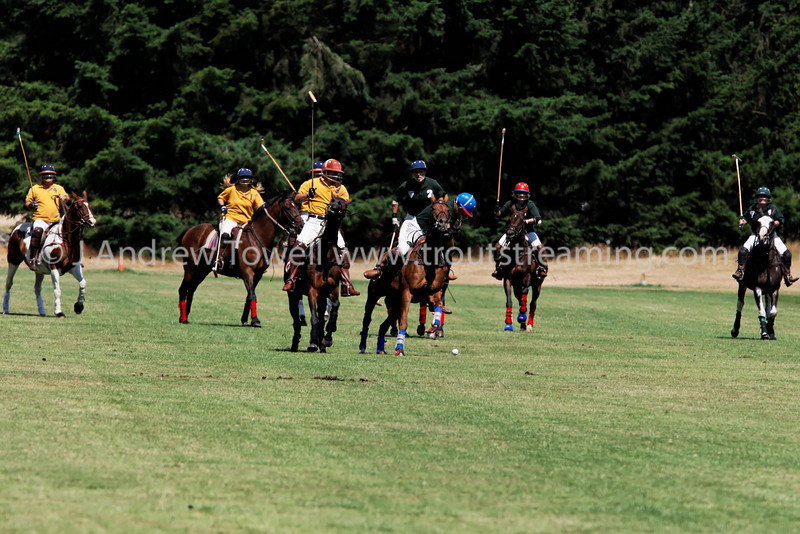 Snapshot gallery of images from the August 3rd 2008 Tacoma Polo Club 40th  Anniversary Tournament. Images have been batch processed for display on the web. Image Copyright © 2008 J. Andrew Towell All Rights Reserved. Please contact the copyright holder at troutstreaming@gmail.com to discuss any and all usage rights.
