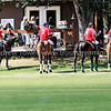 Snapshot images from the Tacoma Polo Club August 28, 2010 Gordie Wood Memorial Tournament. Images Copyright © 2010 J. Andrew Towell All Rights Reserved. Please contact the copyright holder at troutstreaming@gmail.com to discuss any publication or commercial usage rights. Small web use images available upon request with any print order.