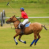 130707 Tacoma Polo Club Independence Cup Sunday Zero Goal Blue versus Red