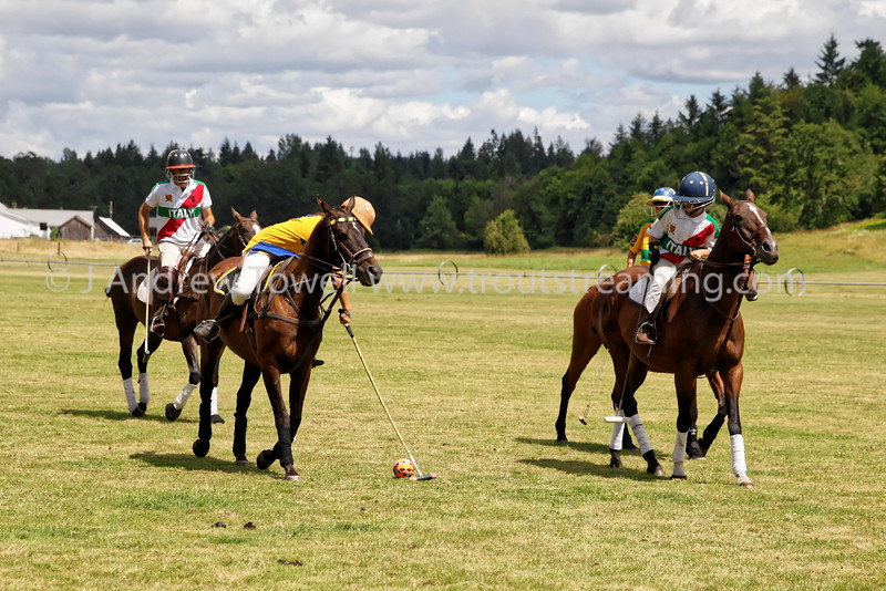 160702 Tacoma Polo Club Independence Cup