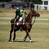 20170701 Tacoma Polo Club Independence Cup