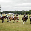 2018 Tacoma Polo Club Independence Cup Snapshots