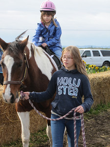 WVPC hosts pony rides at EZ Orchards Farm in Salem. Natalie helps out with Vegas