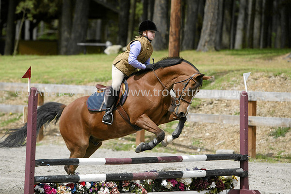 Jump into Spring Carbon River Pony Club Open Benefit Horse Show images. From the May 5th 2007 show at the Frontier Park Equestrian Facilities in Pierce County Washington. Image Copyright © 2007 J. Andrew Towell All Rights Reserved. Please contact the copyright holder at troutstreaming@gmail.com to discuss any and all usage rights.
