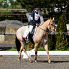 Official Photographer snapshot galleries of images from the 2010 Northwest Region United States Pony Club Regional Qualifying Dressage Rally at Donida Farms in Auburn Washington on April 24th and 25th 2010. Images Copyright © 2010 J. Andrew Towell All Rights Reserved. Please contact the copyright holder at troutstreaming@gmail.com to discuss any publication or commercial usage rights. Small web use images available upon request with any print order.