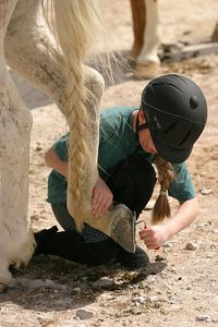 Natalie picks out Jenny's hooves. I liked that they each have a braid.