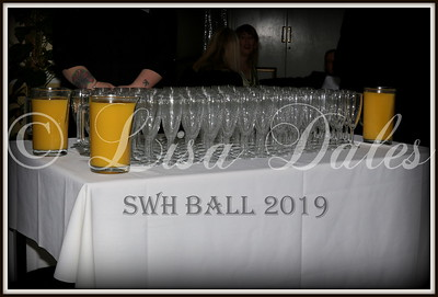 SWH  BALL 2019