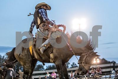 Rodeo-4161-12x8