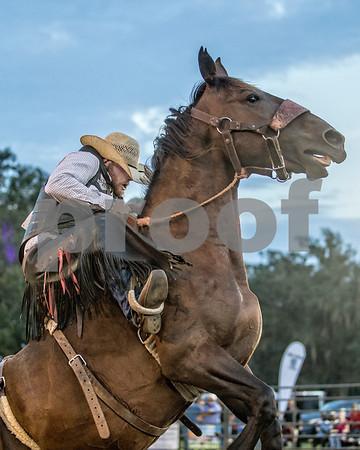 Rodeo-4033-8x10