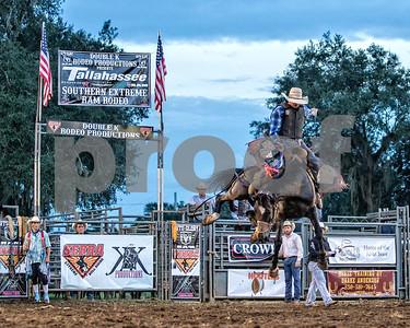 Rodeo-4133-10x8