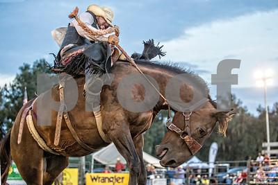 Rodeo-4018-12x8
