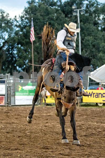 Rodeo-4003-8x12