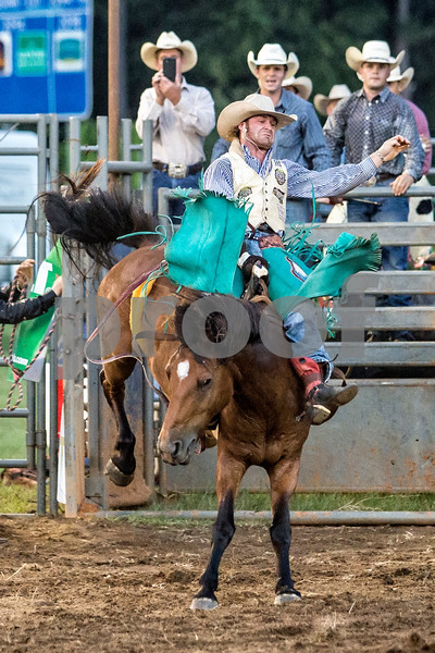 Rodeo-3869-8x12