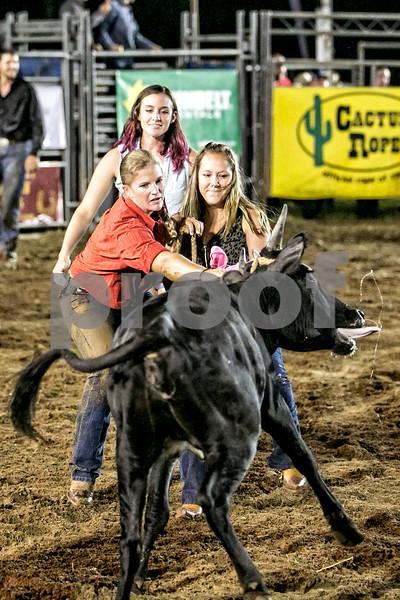Rodeo-4393-8x12