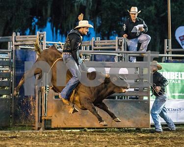 Rodeo-4334-10x8