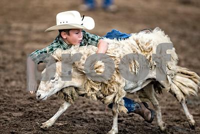 Rodeo-3397-12x8