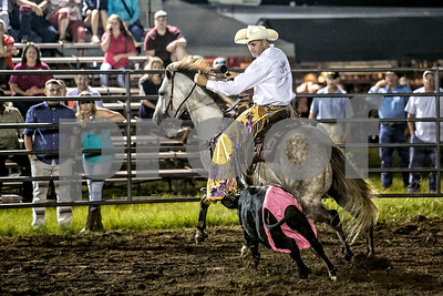 Rodeo-4460-12x8