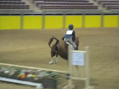 Video: Natalie and Memo in the jumping portion of their Hunter Hack classes.