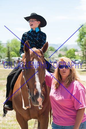 Colorado Stock Horse Assoc. (CSHA)