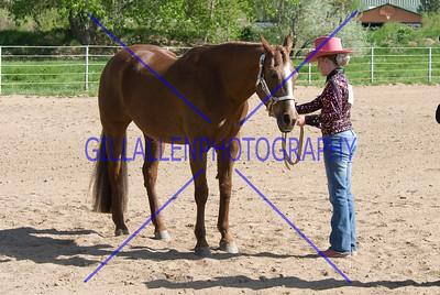 HorseShow-2573-44