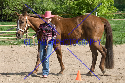 HorseShow-2571-42
