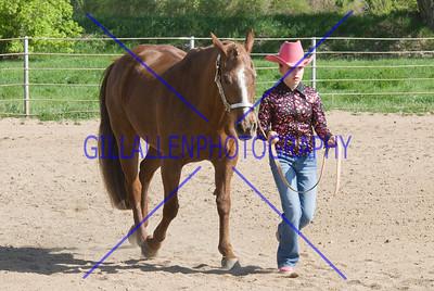 HorseShow-2572-43
